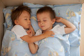 Baby boys, sleeping — Stock Photo