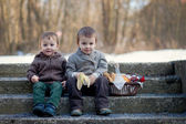 Two boys with picnic basket — Stock Photo