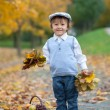 Boy in a park with leaves and basket of fruits — Stock Photo