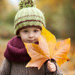 Autumn portrait of a boy with hat and big leaf — Stock Photo #33804891