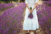 Beautiful young woman, holding lavender in a field — Stock Photo