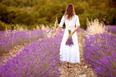 Beautiful young woman, holding lavender in a field — Foto Stock