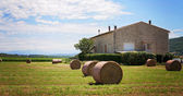 Summer rural landscape with a field and haystacks — Photo