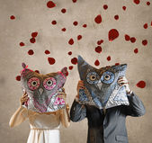 Bride and Bridegroom with Owl Pillows in Front of Faces and Falling Rosepetals — Stok fotoğraf