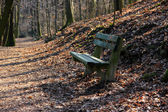 Lonely Bench in The Park — Stock Photo