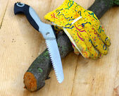 Handsaw and Chunk with Gloves — 图库照片