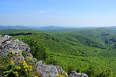 Green Forested Hills in Mountain Range — Stock Photo