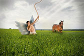 Angel and Horse on Grassfield — Foto Stock