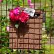 Mailbox with Small Bouquet of Roses — Stock Photo #47026833