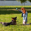Stock Photo: German shepherd with girl