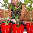 Stock Photo: Obsessive womtaking care of plant