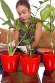 Obsessive woman taking care of plant — Stock Photo