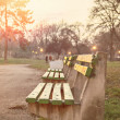 Bench in the park at sunset — Stock Photo