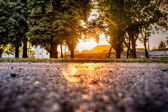 Park przy zachodzie słońca — Zdjęcie stockowe