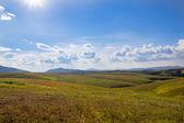 Field landscape with blue sky — Stock Photo