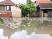 Condition of house with a yard after floods — Stock Photo