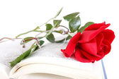 Book and red rose with glasses on pages of book on white backgro — Stock Photo