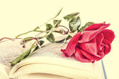 Book and red rose with glasses on pages of book, romantic vintag — Stock Photo