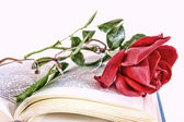 Book and red rose with glasses on pages of book — Stock Photo