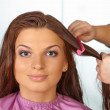 Stock Photo: Hair salon. Womens haircut. Combing.