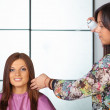 Hair salon. Womens haircut. Use of hairspray. — Stock Photo