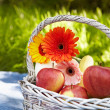 Picnic in the garden. Flowers and fruits. — Stock Photo