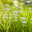 Nature. Background. Grass with soap bubbles. — Stock Photo