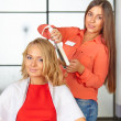 Stock Photo: Hair salon. Women's haircut. Use of straightener.