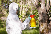 Ecology and environmental pollution. Insecticide. — Stock Photo