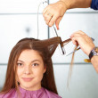 Stock Photo: Hair salon. Womhaircut. Use of straightener.