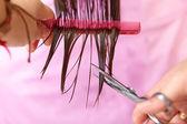 Hair salon. Woman haircut. Cutting. — Stock Photo