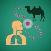 Vector concept of man and animal respiratory pathogenic MERS virus — Stock Vector