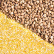 Stock Photo: Corn grits and buckwheat background