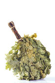 Oak broom — Стоковое фото