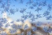 Closeup of winter patterns — Stock Photo