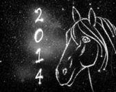 Paard 2014 — Stockfoto