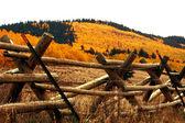 Kenosha passera pluggen staket och höstfärger — Stockfoto