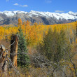������, ������: Elk Mountains and Fall Colors