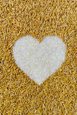 Pile of natural rice grains in heart shape or love sign — Stock Photo