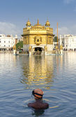 Sikh prayer in pond of Golden Temple in Amritsar, Punjab, India. — Stock Photo