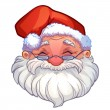 Smiling face of santa — Stock Vector