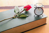 Rose and old diary — Stock Photo
