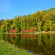 Lake in the autumn park — ストック写真