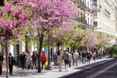 MADRID, SPAIN - APRIL 20th 2013: pedestrians walking on street — Stock Photo