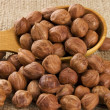 Shelled raw hazelnuts — Stock Photo