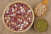 Assortment of legumes — Stock Photo