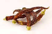 Dried chilli peppers — Stock Photo