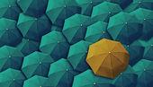 Şemsiye, lider, benzersiz, patron, bireysellik, özgün, özel — Stok fotoğraf