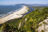 Beautiful Beach in South Brazil — Fotografia Stock