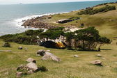 красивый пляж в бразилии — Стоковое фото